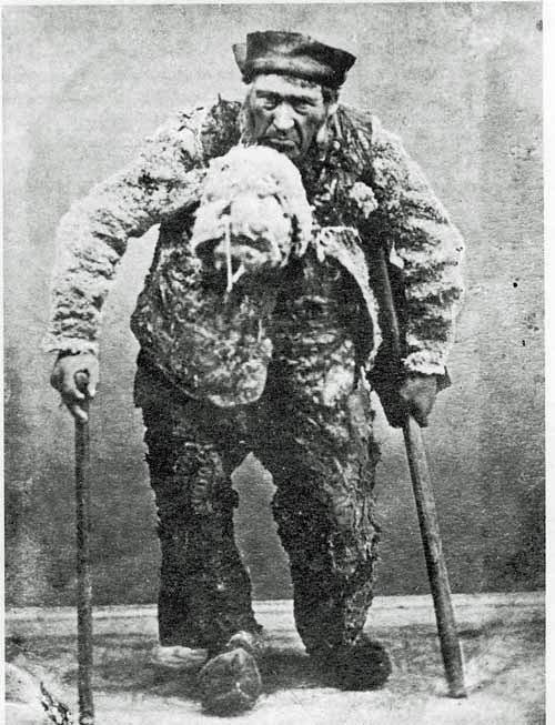 Tordenkalven - ca. 1850