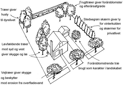 Skitse af have